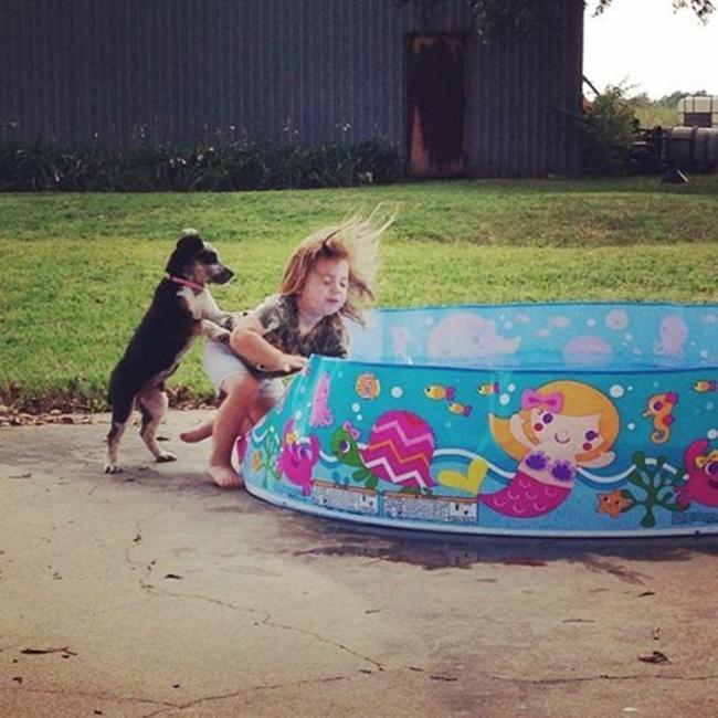 perro-empujando-niña