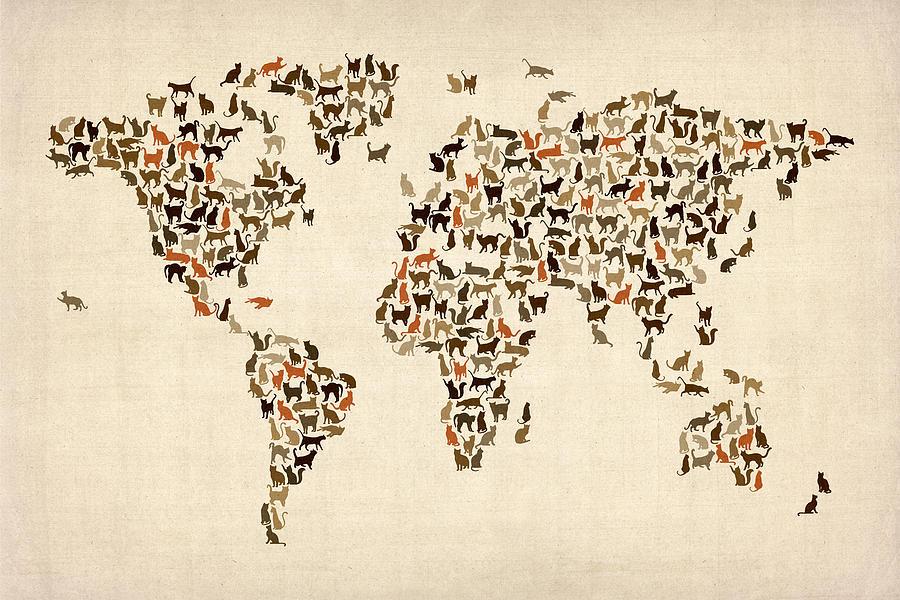 20 curiosidades sobre los gatos que te ayudarán a entenderlos mejor. - 20