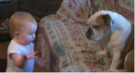 No sabemos que es lo que le quiere decir a su perro... Pero es para partirse de risa.