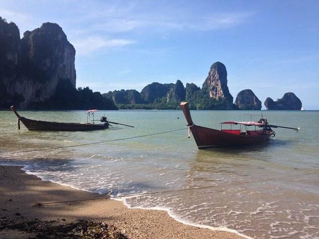 La conmovedora historia de Leo, el perrito paralítico encontrado en una playa de Tailandia - 2