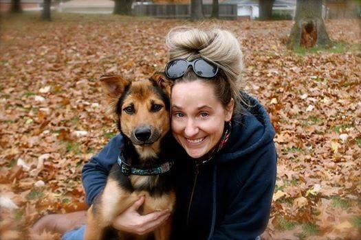 La conmovedora historia de Leo, el perrito paralítico encontrado en una playa de Tailandia - 9