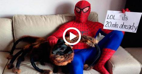 """No te pierdas """"Perro Araña Mutante Gigante"""" El vídeo más visto en 2014 en YouTube"""